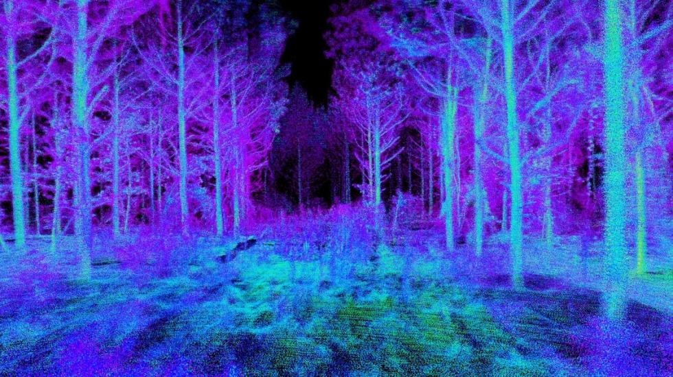 Drone cria mapa em 3D da floresta sobrevoada. Foto: Universidade da Pensilvânia