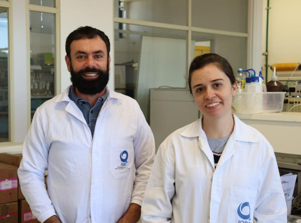 Cientistas do IQSC estudam diversas espécies de bactérias extraídas da natureza. Crédito: Henrique Fontes – IQSC/USP