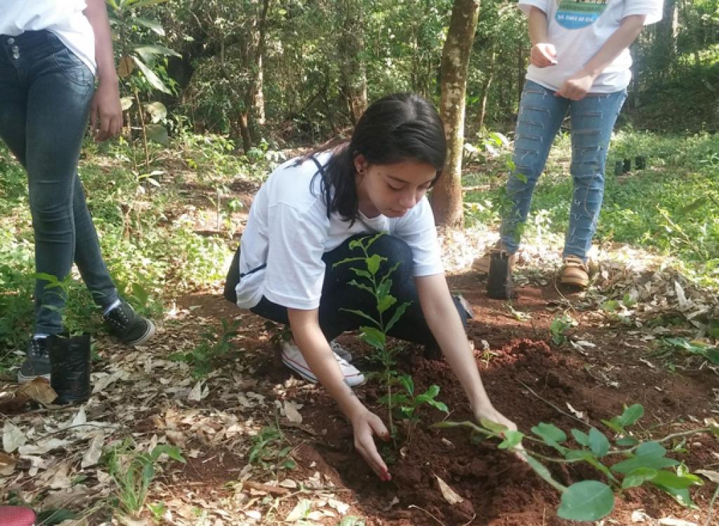 Em Rolândia, alunos do Colégio Villanueva realizaram plantio às margens do Ribeirão Ema - Divulgação